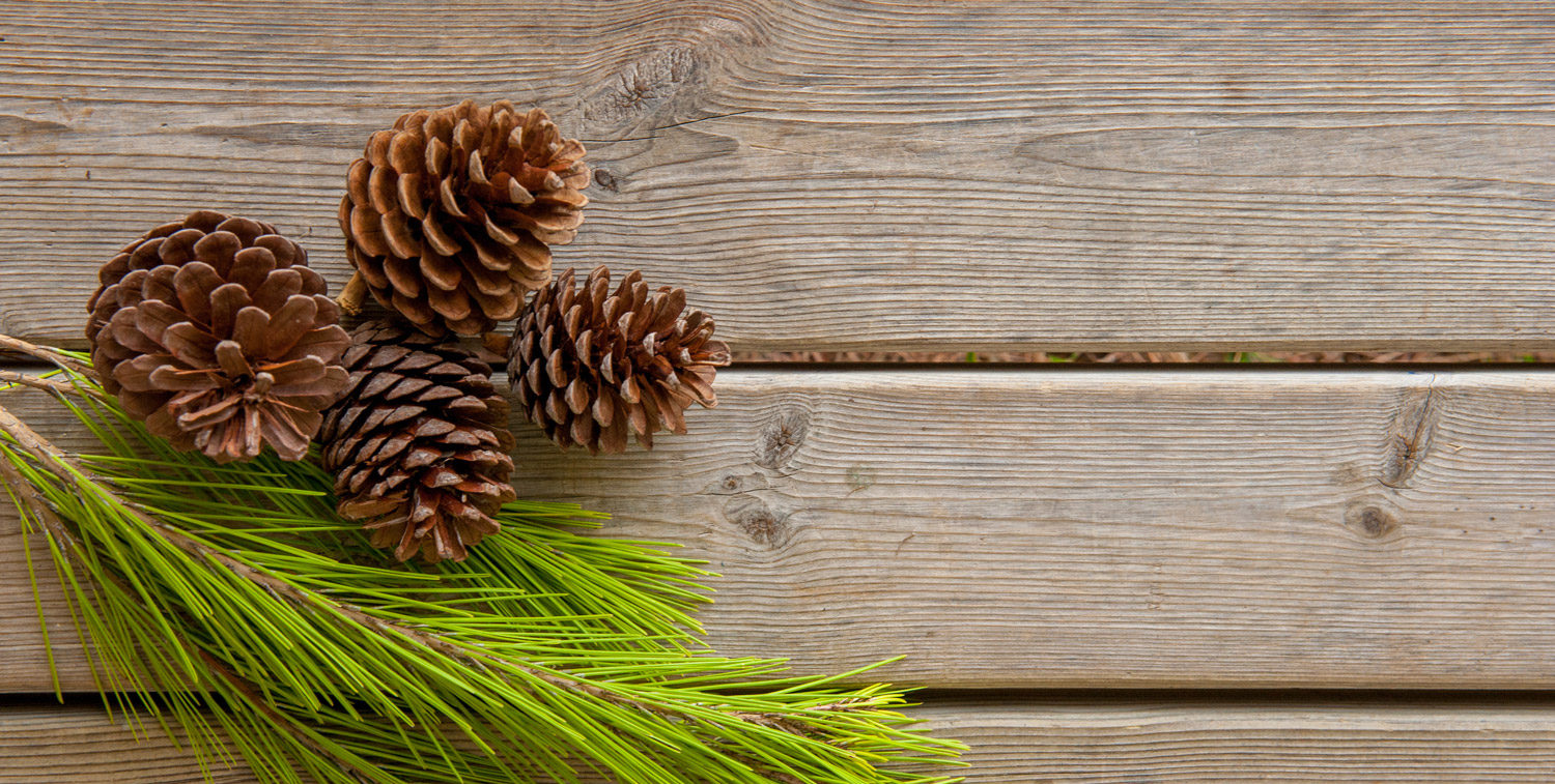 pine-table_319017890